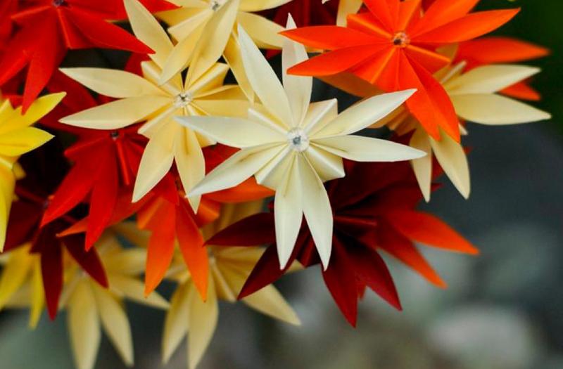 origami NIG (6)