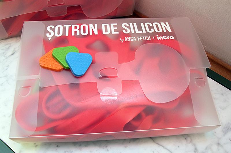Sotron-de-silicon-Anca-Fetcu NIG (3)