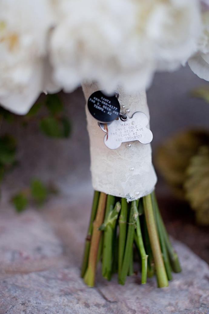 caine nunta in gradina (3)