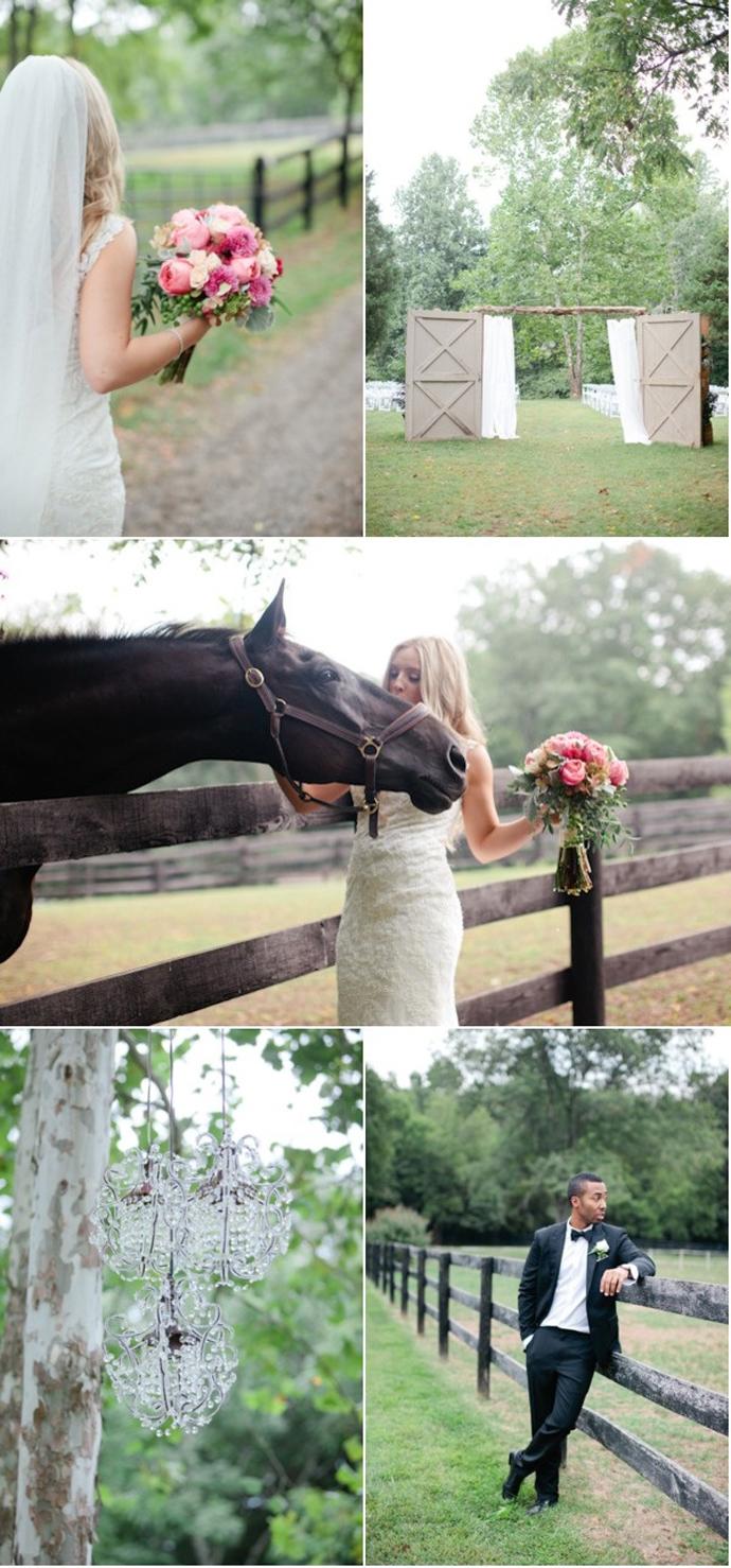cai-nunta in gradina (1)