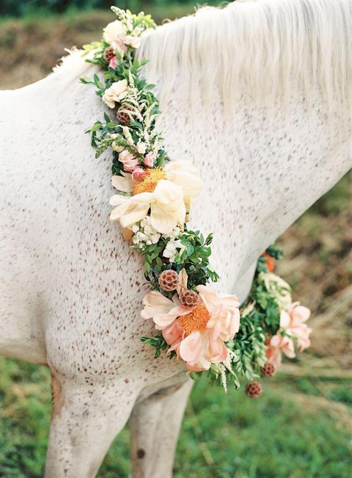cai-nunta in gradina (11)