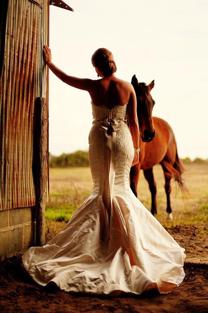cai-nunta in gradina (19)