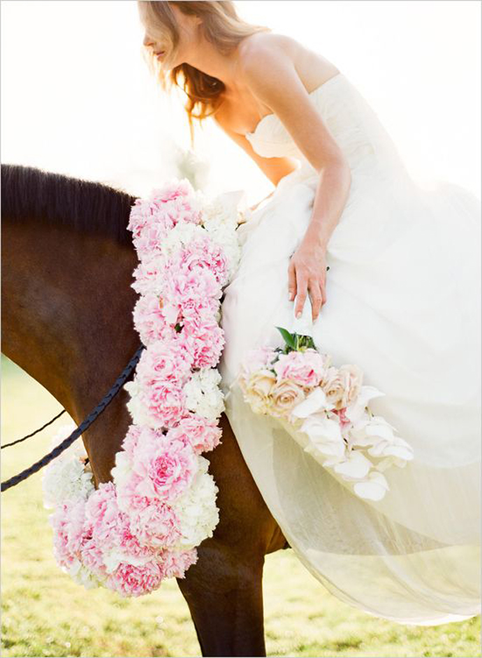 cai-nunta in gradina (35)
