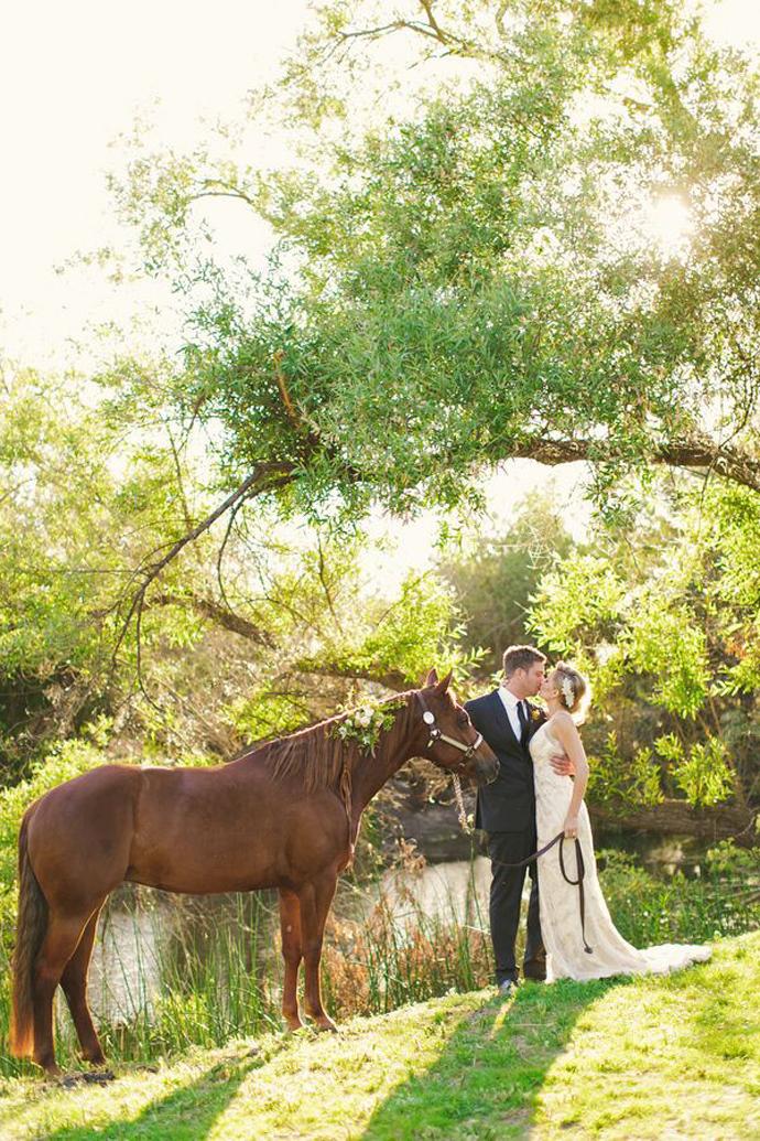 cai-nunta in gradina (9)