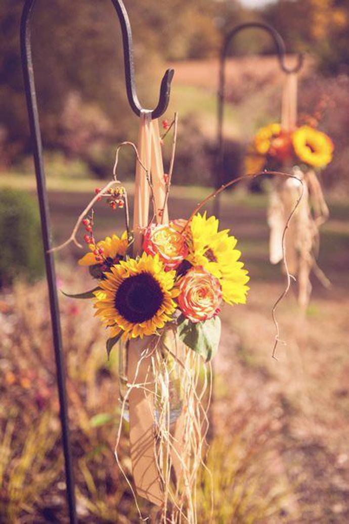floarea soarelui-nunta in gradina (17)