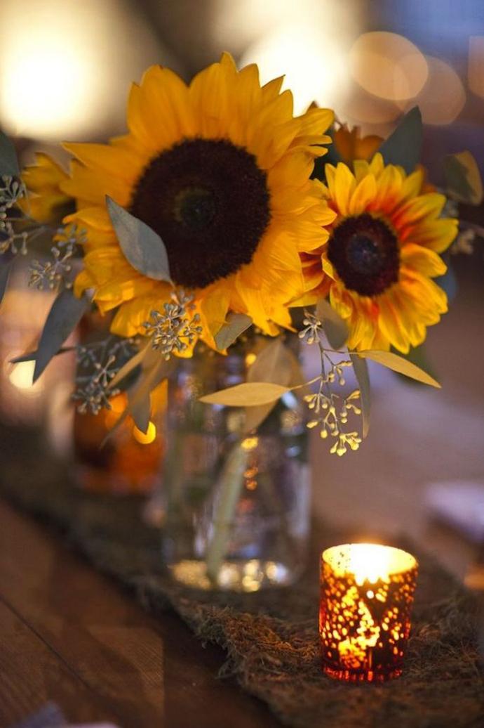 floarea soarelui-nunta in gradina (20)