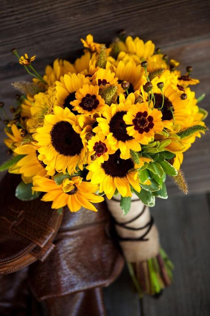 floarea soarelui-nunta in gradina (21)