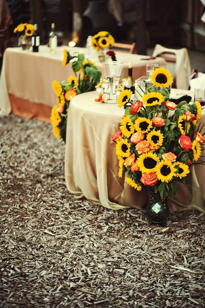 floarea soarelui-nunta in gradina (26)