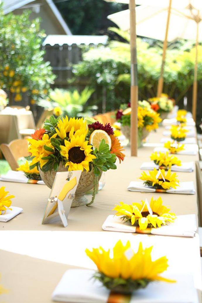 floarea soarelui-nunta in gradina (30)