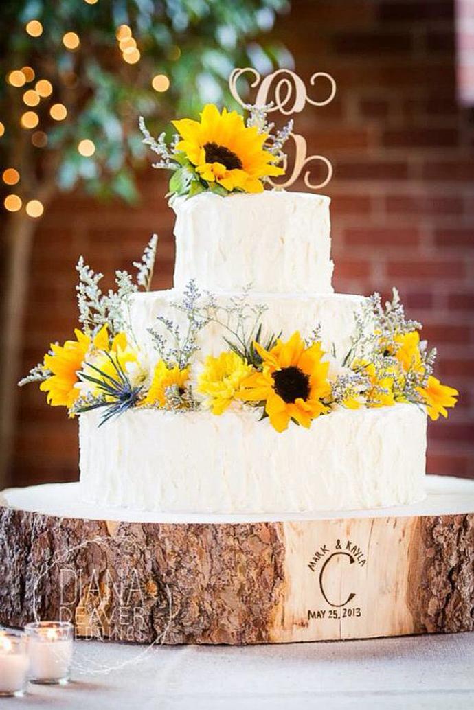 floarea soarelui-nunta in gradina (34)
