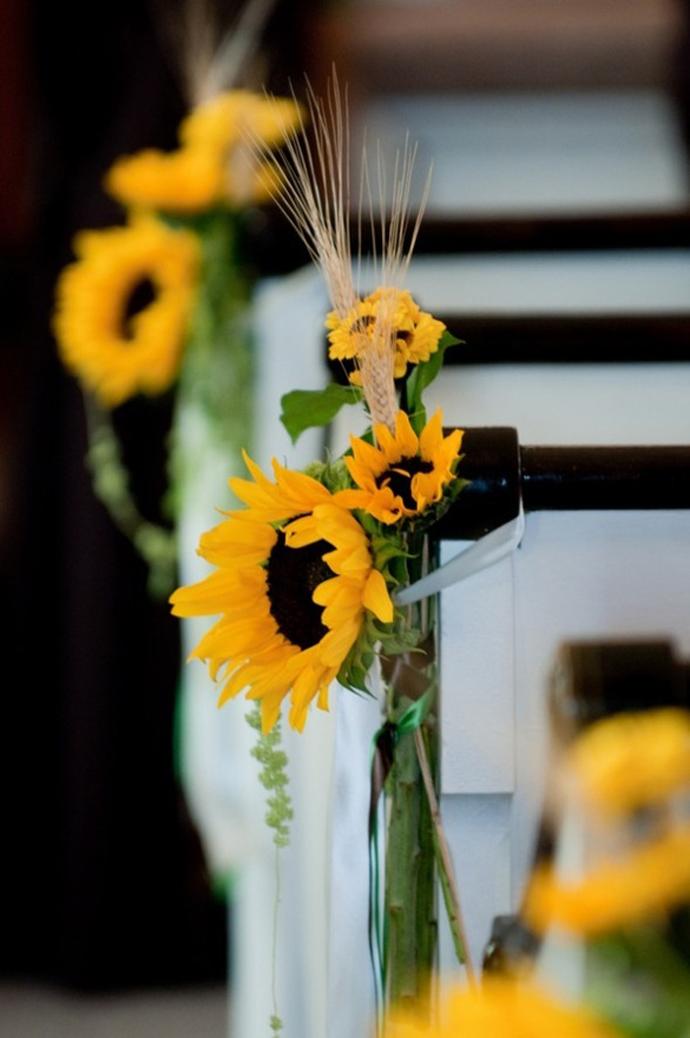 floarea soarelui-nunta in gradina (36)