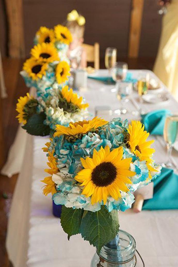 floarea soarelui-nunta in gradina (6)