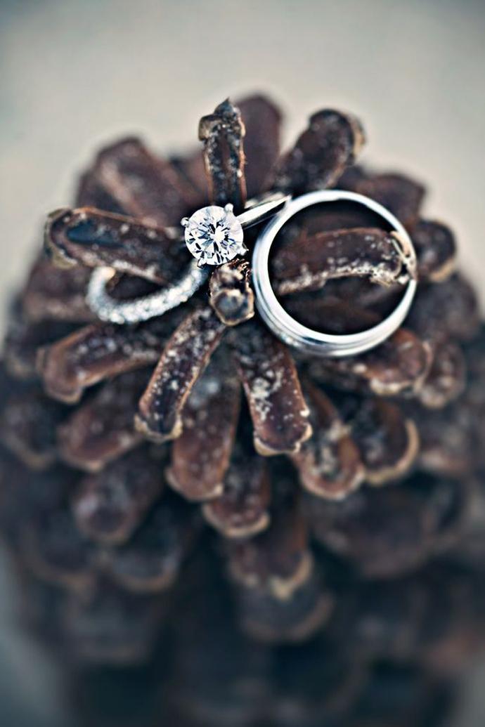 inele -nunta in gradina (15)