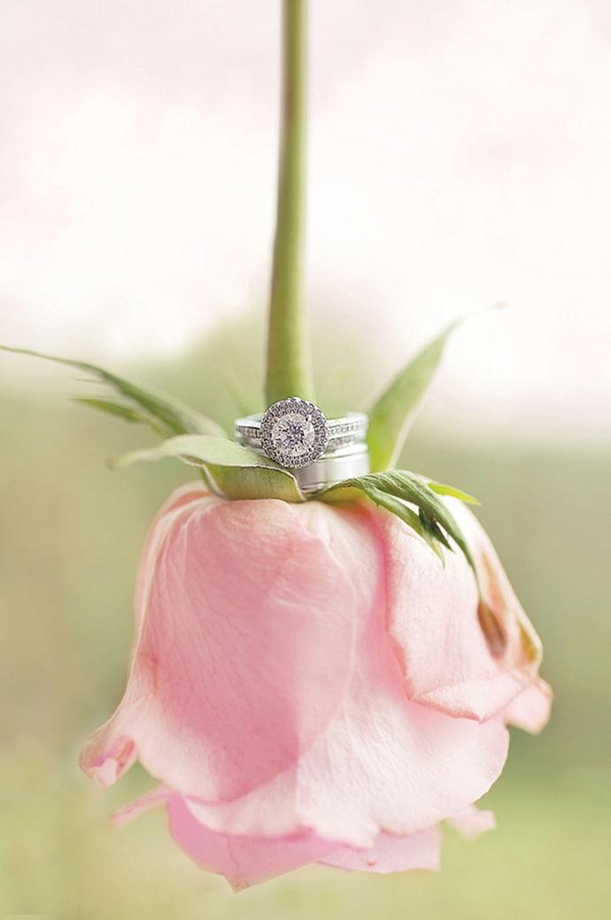 inele -nunta in gradina (6)
