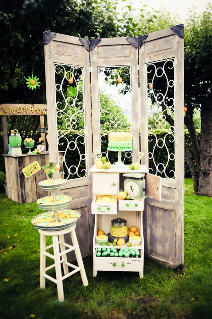 lemonade bar-nunta in gradina (24)