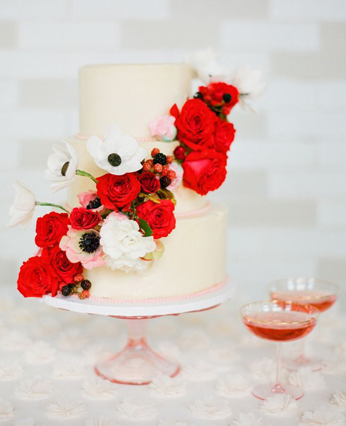 maci-nunta in gradina (7)