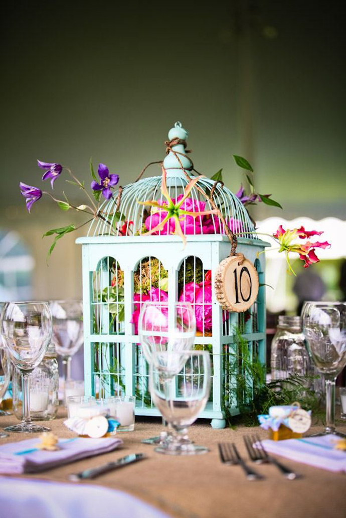 porumbei-nunta in gradina (11)