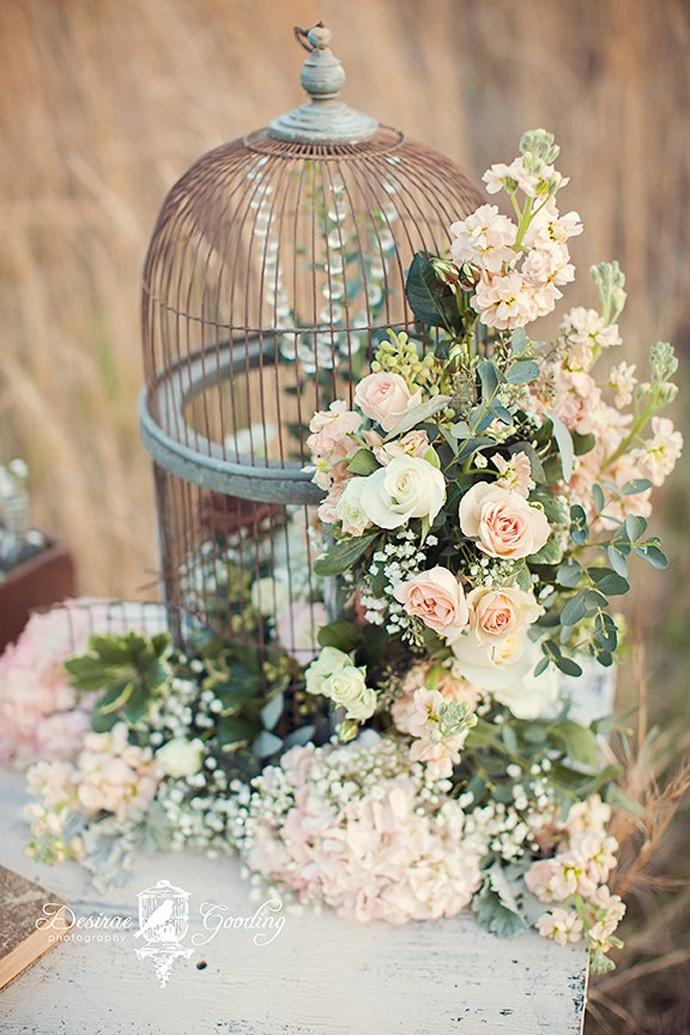 porumbei-nunta in gradina (12)