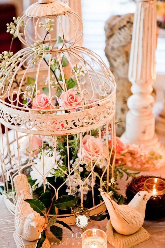 porumbei-nunta in gradina (19)