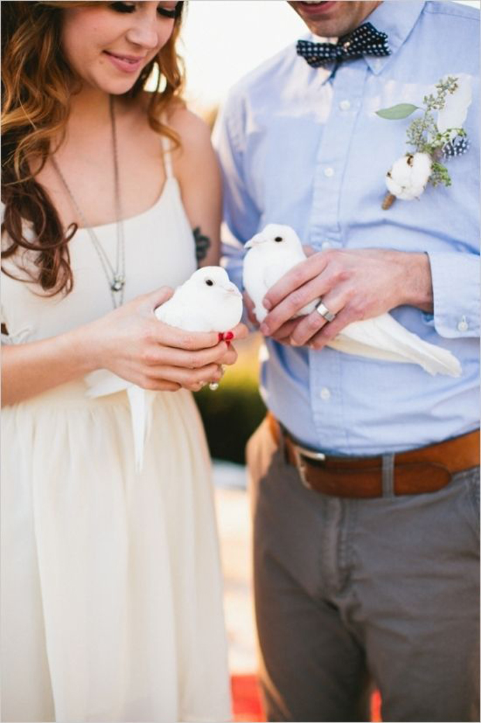 porumbei-nunta in gradina (9)