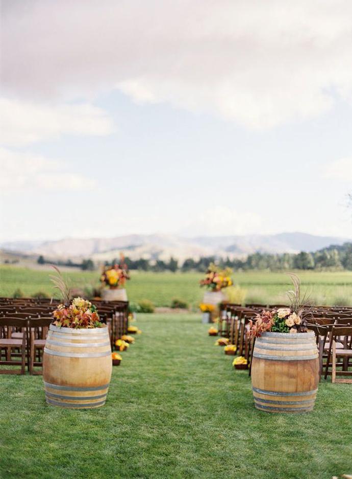 vin struguri-nunta in gradina (5)