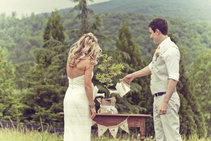 copac-nunta in gradina (1)
