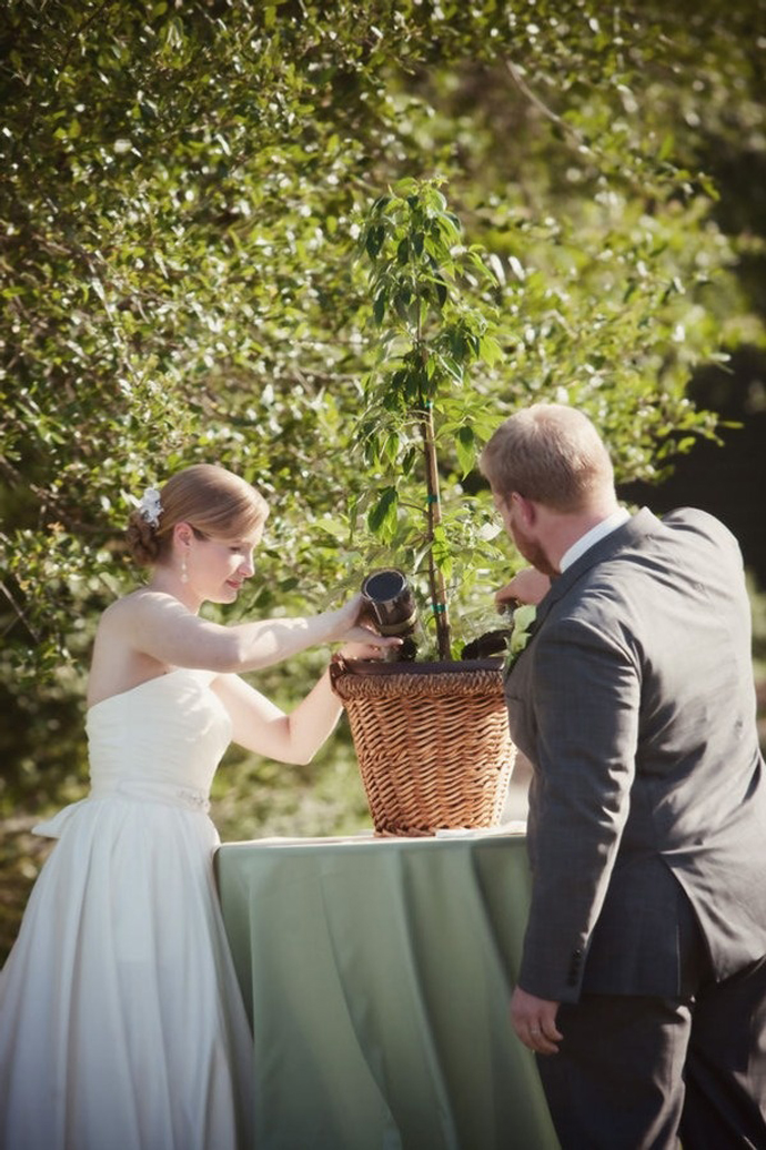 copac-nunta in gradina (13)