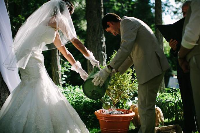 copac-nunta in gradina (5)