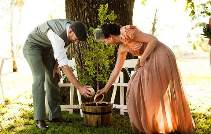copac-nunta in gradina (6)