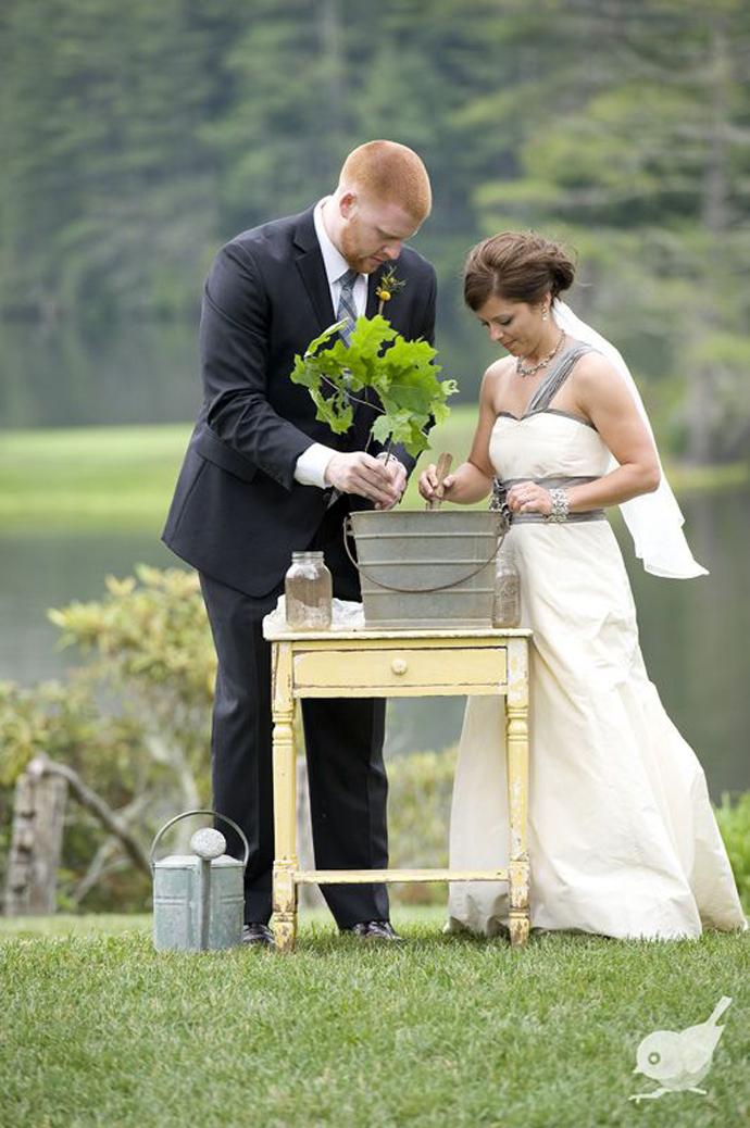 copac-nunta in gradina (7)