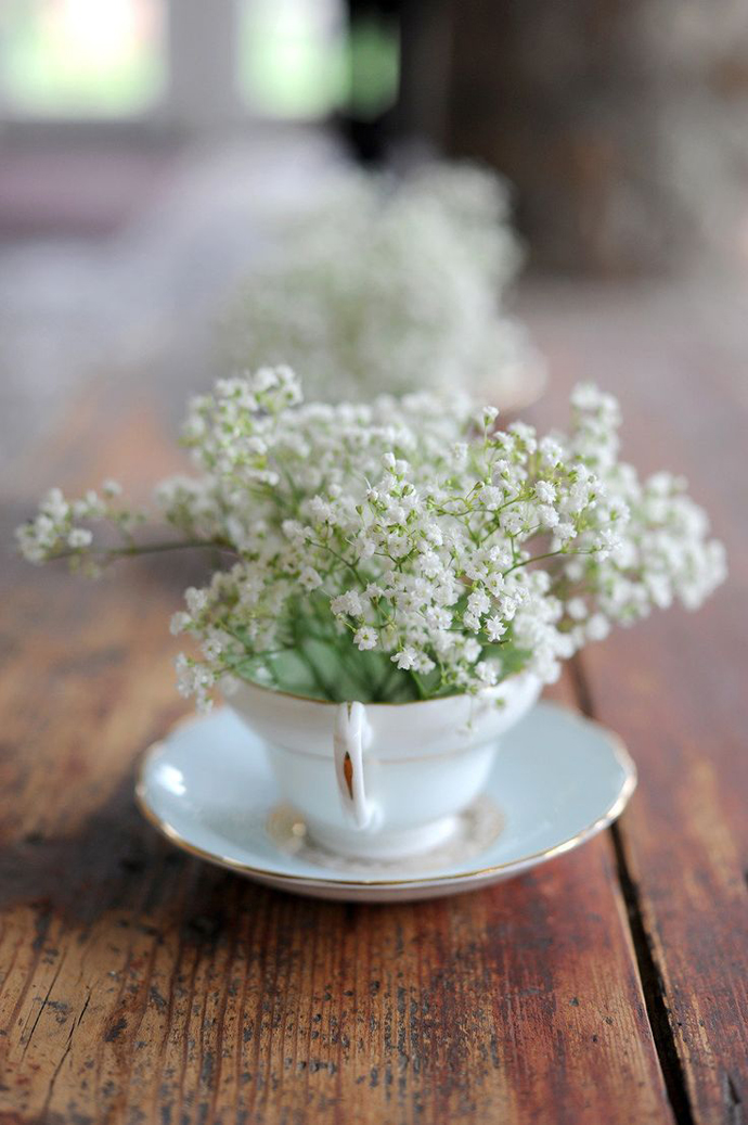 floarea miresei-nunta in gradina (2)
