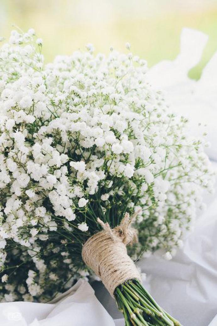 floarea miresei-nunta in gradina (3)