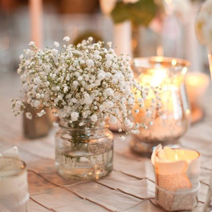 floarea miresei-nunta in gradina (8)
