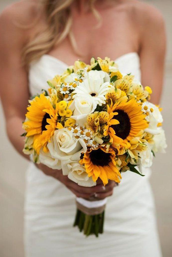 floarea soarelui-nunta in gradina (13)