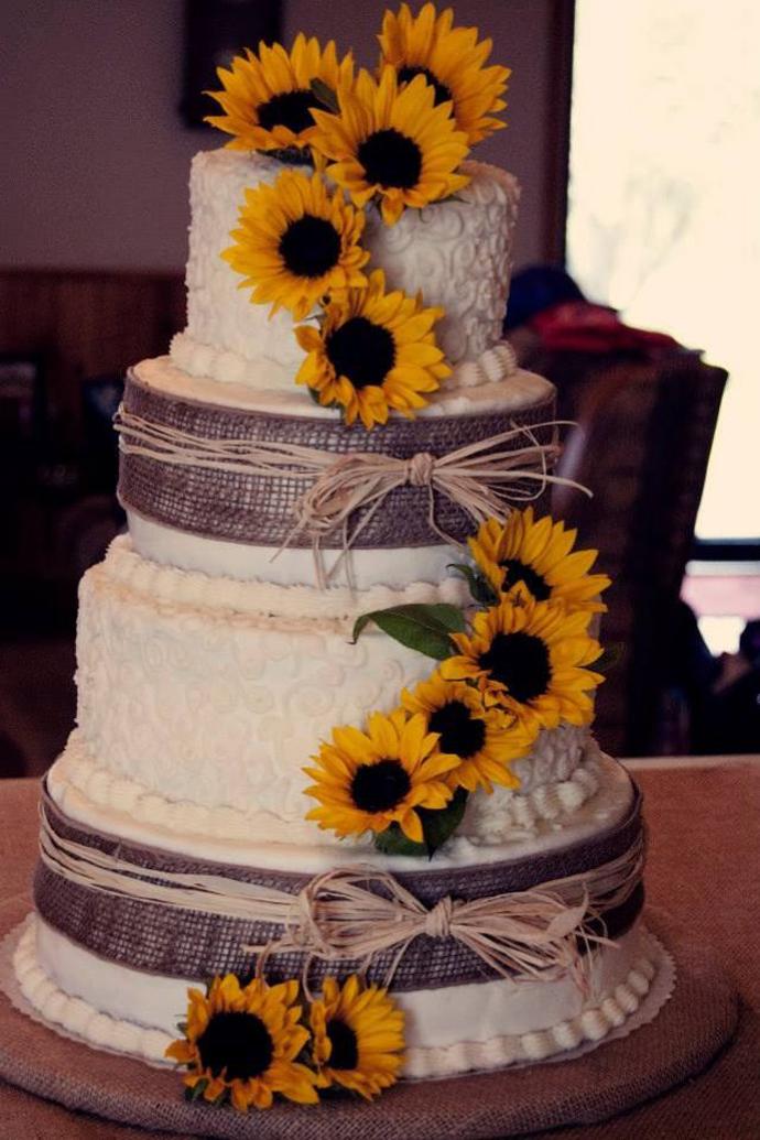 floarea soarelui-nunta in gradina (18)