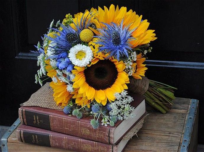 floarea soarelui-nunta in gradina (2)