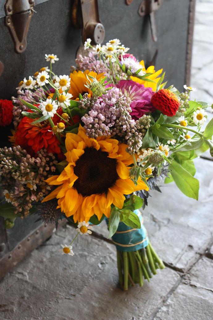 floarea soarelui-nunta in gradina (35)