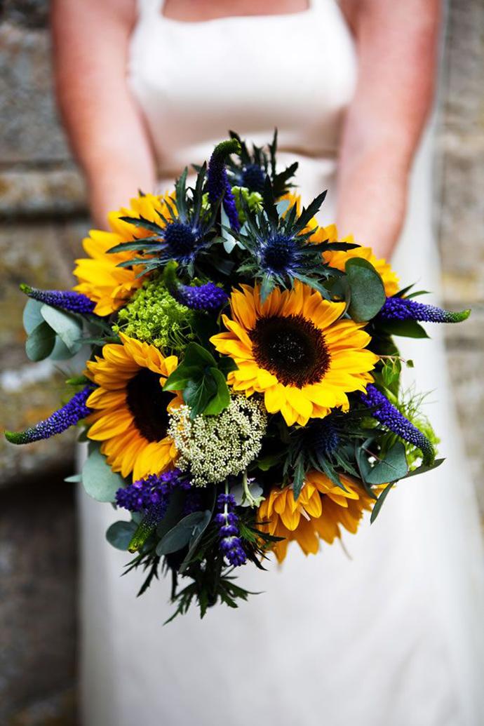 floarea soarelui-nunta in gradina (4)