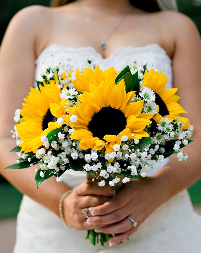floarea soarelui-nunta in gradina (9)