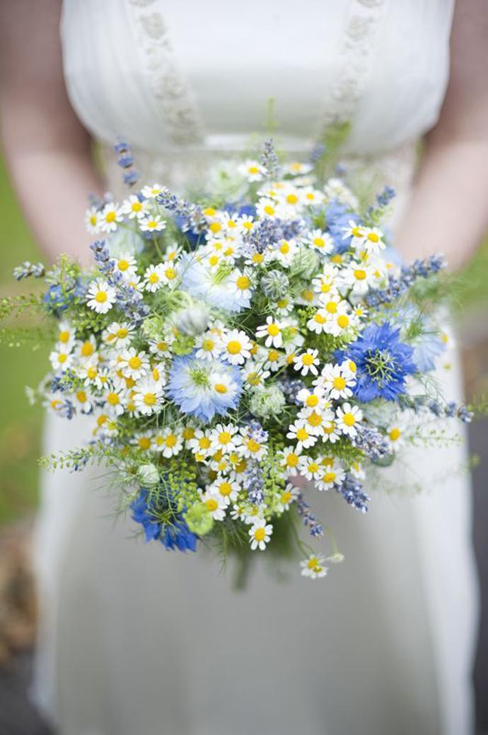 galben albastru nunta in gradina (2)