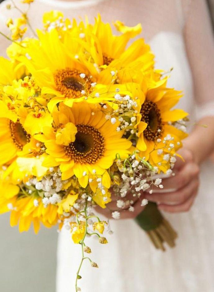 nunta in gradina-floarea soarelui (7)