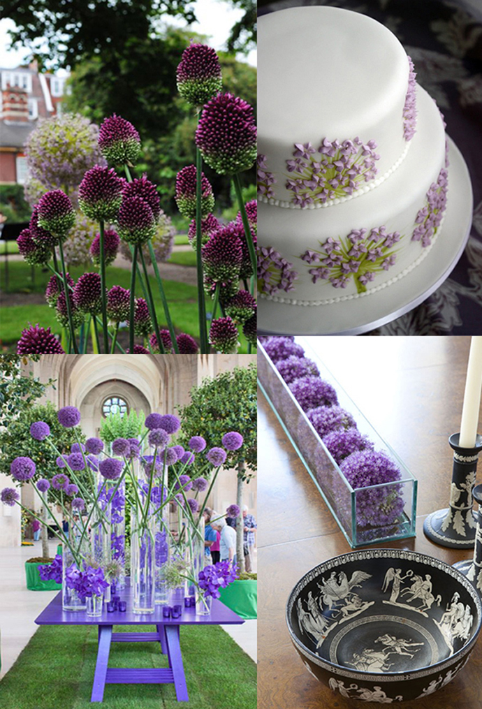 Purple alliums-nunta in gradina (20)