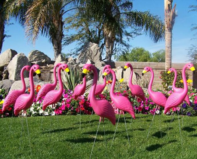 flamingo-nunta in gradina (6)