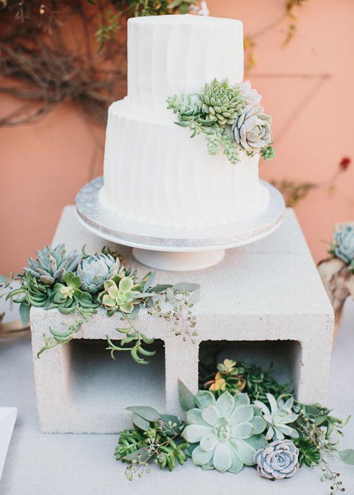 tort plante suculente-nunta in gradina (12)