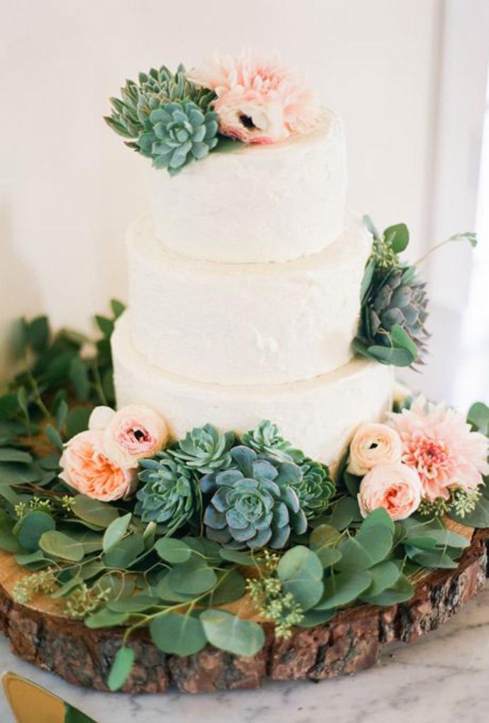 tort plante suculente-nunta in gradina (14)