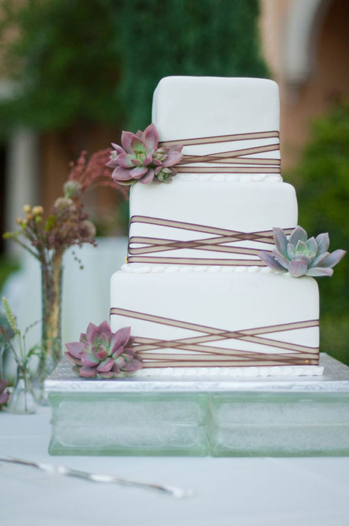 tort plante suculente-nunta in gradina (15)