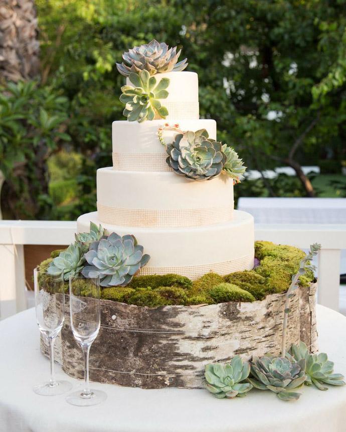 tort plante suculente-nunta in gradina (16)