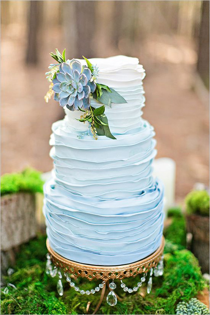 tort plante suculente-nunta in gradina (18)
