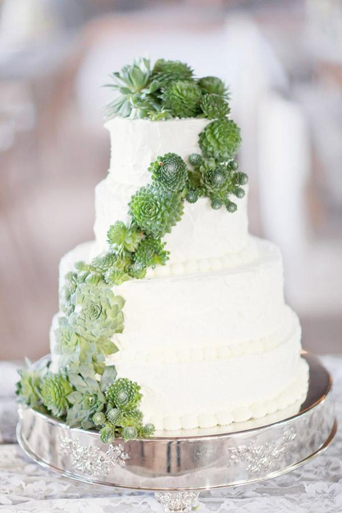 tort plante suculente-nunta in gradina (2)