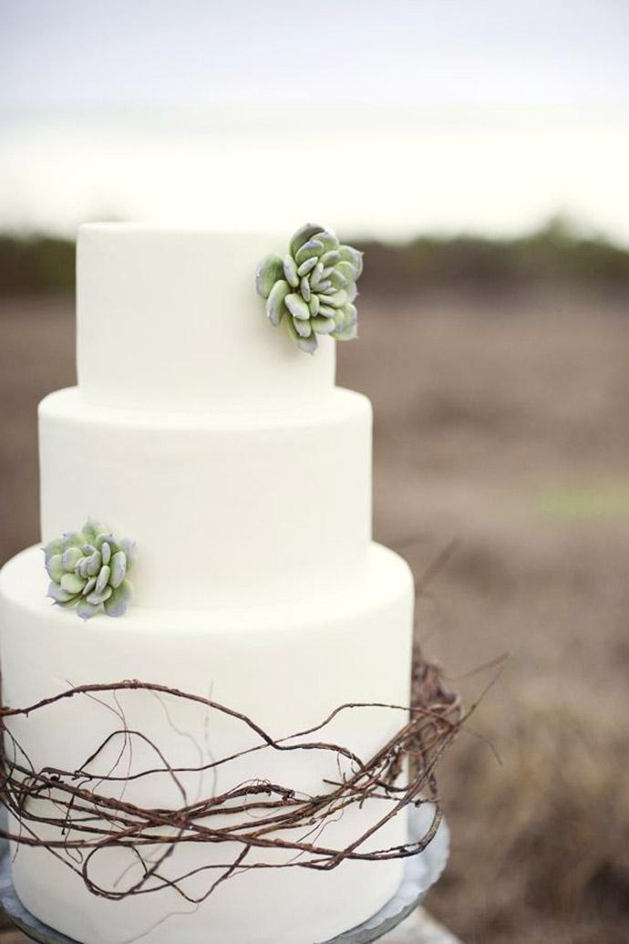 tort plante suculente-nunta in gradina (20)